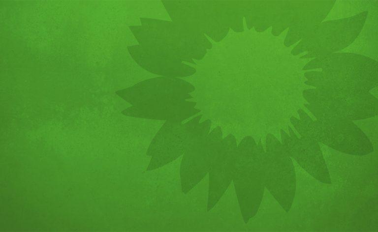Sonnenblume von Bündnis 90/Die Grünen vor grünem Hintergrund
