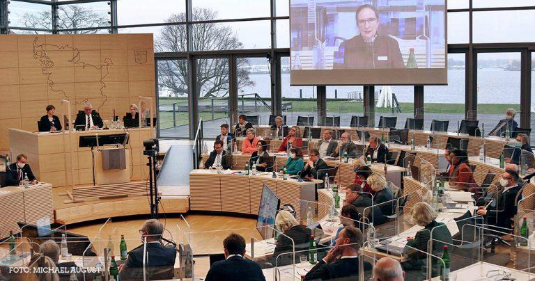 Landtagsplenum mit digitaler Zuschaltung einer anzuhörenden Expertin